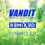 Various Artists – The VANDIT Spring Remixed EP
