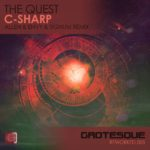 The Quest – C Sharp (Allen & Envy and Signum Remixes)