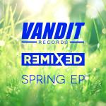 Various Artists – The VANDIT Spring Remixed EP