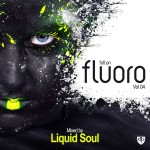 Full On Fluoro Vol. 4 mixed by Liquid Soul