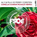 Aly & Fila vs. Ferry Corsten – Camellia (Ciaran McAuley Remix)