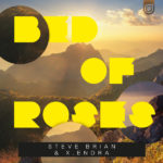Steve Brian & x.endra – Bed Of Roses