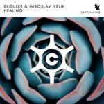 Exouler & Miroslav Vrlik – Healing