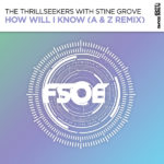 The Thrillseekers with Stine Grove – How Will I Know (A & Z Remix)