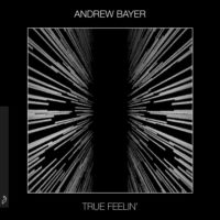 Andrew Bayer - True Feelin
