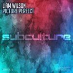 Liam Wilson – Picture Perfect