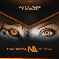 Lost In Noise – The Cube