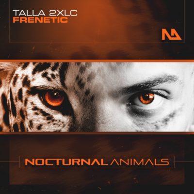 Talla 2XLC - Frenetic