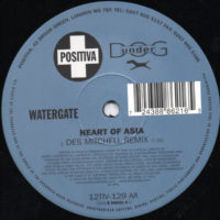 Watergate - Heart Of Asia (Des Mitchell Remix)