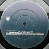 BT - Flaming June (BT & PVD Original Mix)