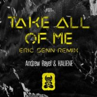 Andrew Rayel & HALIENE - Take All Of Me (Eric Senn Remix)