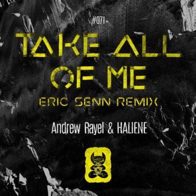 Andrew Rayel & HALIENE - Take All Of Me (Eric Senn Remix)