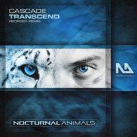 Cascade - Transcend (ReOrder Remix)