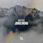 Whiteout – Jomolungma