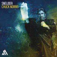Sneijder - Chuck Norris