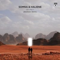 Somna & Haliene - Secret (ReOrder Remix)