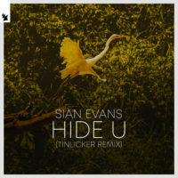 Sian Evans - Hide U (Tinlicker Remix)